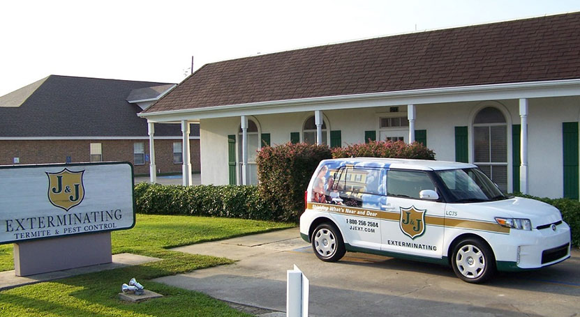 Termite and Pest Control Lake Charles LA on homes for rent in iowa la, homes for rent in opelousas la, homes for rent in jeanerette la,